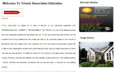 Triveni Associates